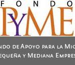 Reglas Fondo Pyme 2011